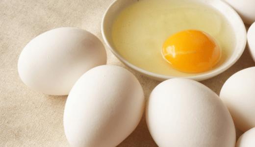 ロッキーは正しい?卵の正解、不正解。
